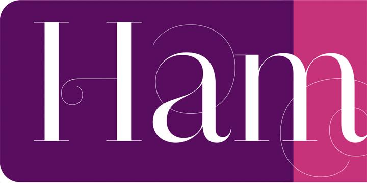narziss font